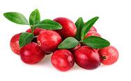 Cranberrystücke